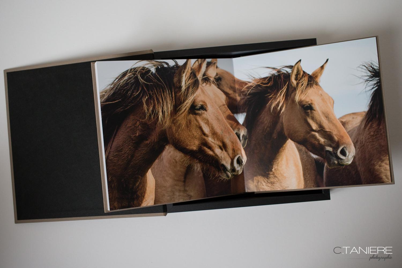 Christophe Taniere présentera son livre sur le thème du cheval de Picardie, le « Henson » les 4, 5 & 6 Juin 2015 à Chantilly