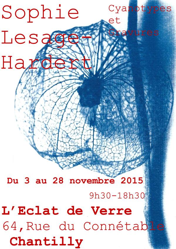 Exposition Cyanotypes et Gravures