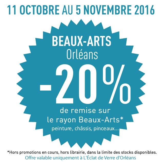 -20% sur le rayon beaux arts à Orleans