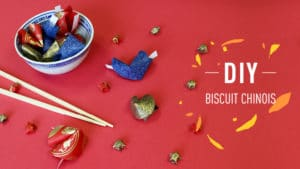 Biscuit chinois origami